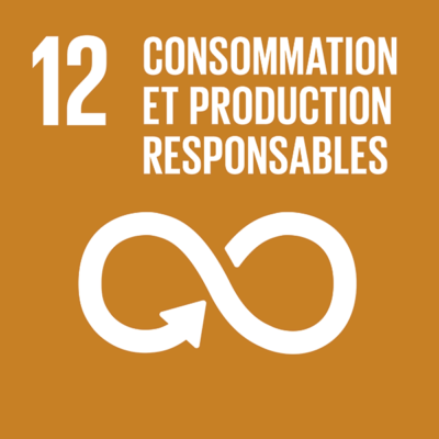 ODD n°12 - Consommation et productions responsables
