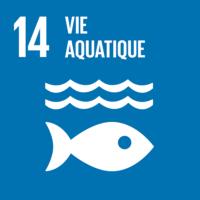 ODD n°14 - Protection de la faune et flore aquatiques